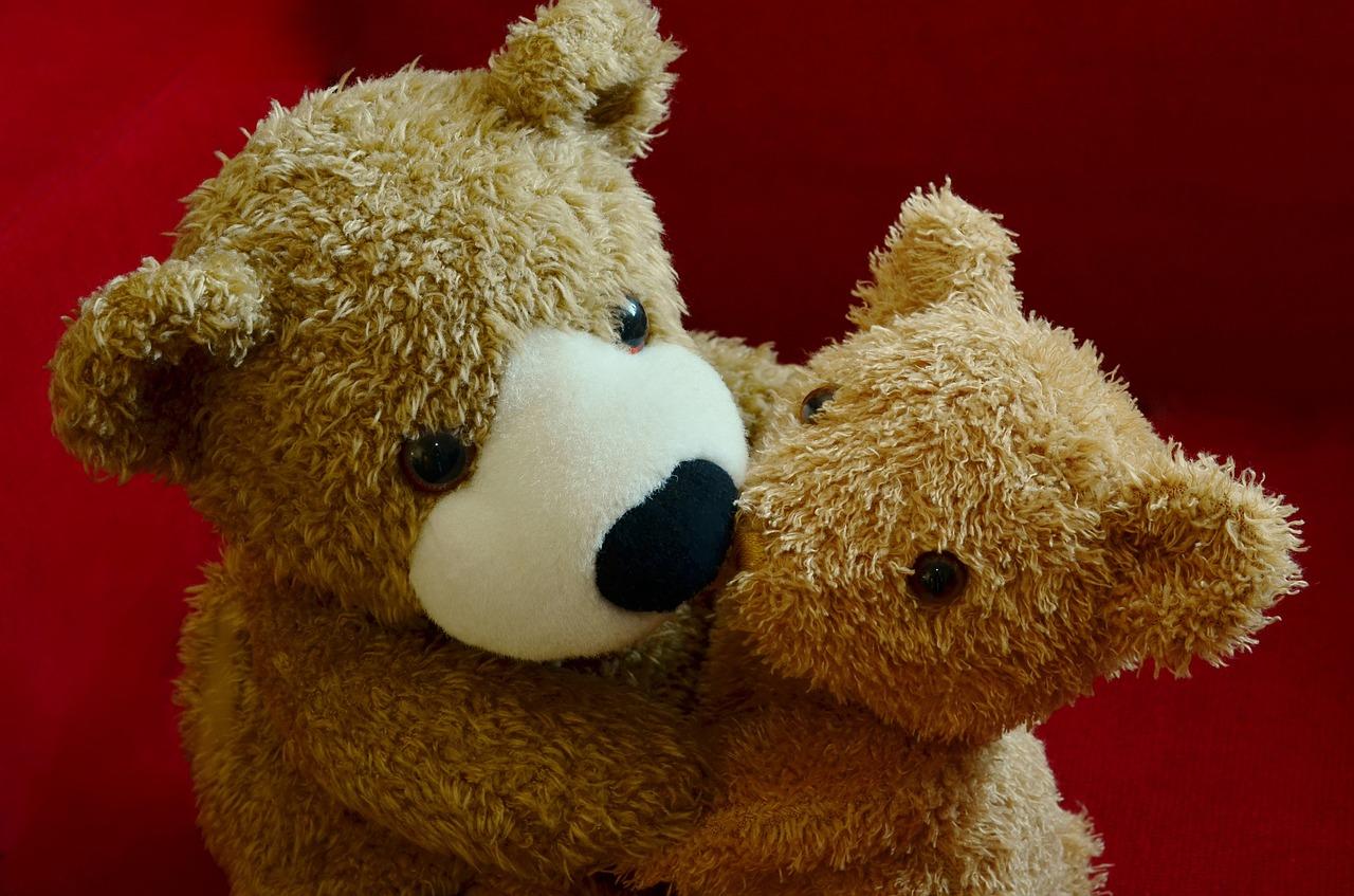 聖書からたどる共感(empathy)・同感(sympathy)・同情(compassion)の語源と違い ―サイコパス・インサイド読後感想その1