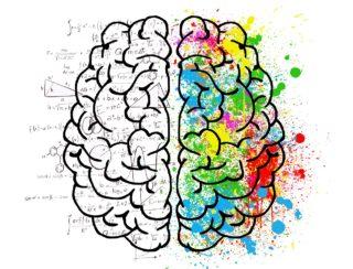 「自閉症と感覚過敏」レビュー・感想前編 むしろ感覚過敏が自閉症を形成する?
